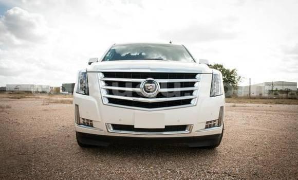Acheter Neuf Voiture Cadillac Escalade Blanc à Ouagadougou, Burkina-Faso