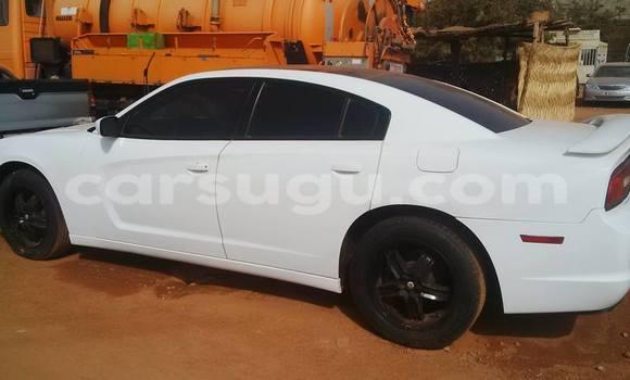 Acheter Occasion Voiture Dodge Charger Blanc à Ouagadougou, Burkina-Faso