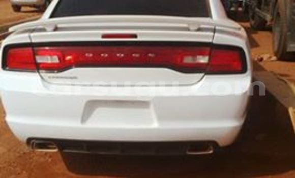 Acheter Neuf Voiture Dodge Charger Blanc à Ouagadougou, Burkina-Faso