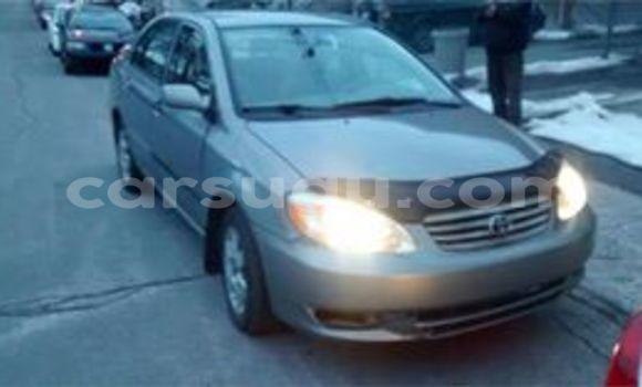 Acheter Neuf Voiture Toyota Corolla Gris à Ouagadougou, Burkina-Faso