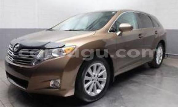 Acheter Neuf Voiture Toyota Venza Marron à Ouagadougou, Burkina-Faso