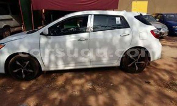 Acheter Neuf Voiture Toyota 4Runner Blanc à Ouagadougou, Burkina-Faso