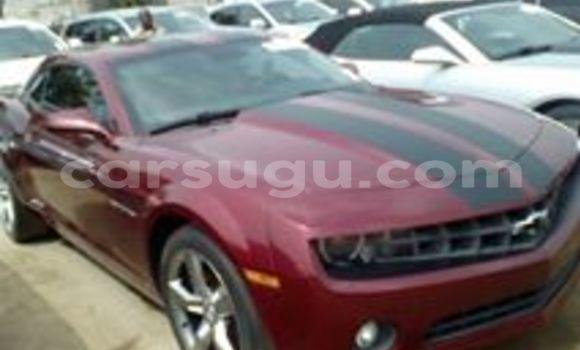 Acheter Neuf Voiture Chevrolet Camaro Rouge à Bobo Dioulasso, Burkina-Faso