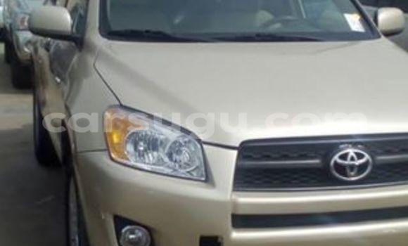 Acheter Neuf Voiture Toyota RAV4 Marron à Bobo Dioulasso, Burkina-Faso