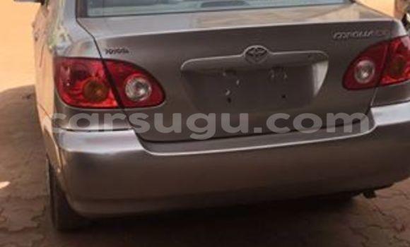 Acheter Neuf Voiture Toyota Corolla Marron à Ouagadougou, Burkina-Faso