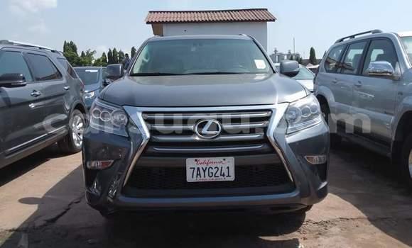 Acheter Occasion Voiture Lexus GX 460 Gris à Ouagadougou, Burkina-Faso