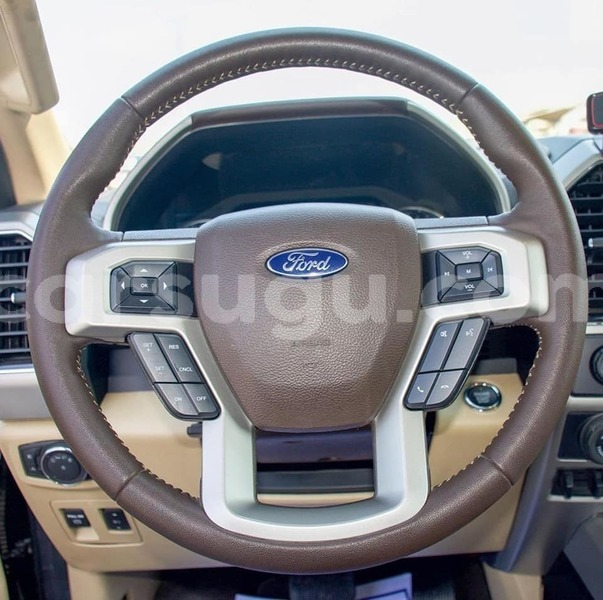 Big with watermark ford f 150 soum aribinda 7876