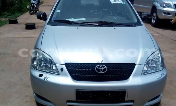 Acheter Occasion Voiture Toyota Corolla Gris à Bobo Dioulasso au Burkina-Faso