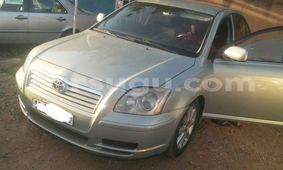Acheter Importer Voiture Toyota Avensis Gris à Ouagadougou, Burkina-Faso